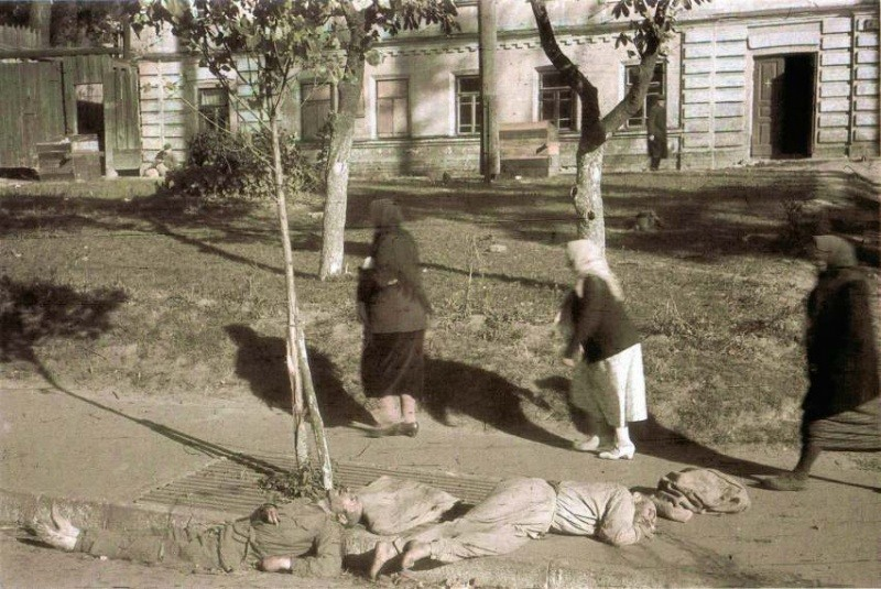 Убитые советские военнопленные на улице оккупированного Киева