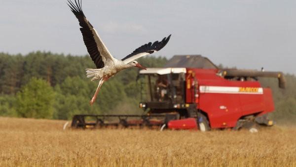 Ростовские аграрии собрали рекордные за 20 лет 9,4 млн тонн зерновых