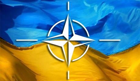 Путь в НАТО - тревожный звонок для Донбасса