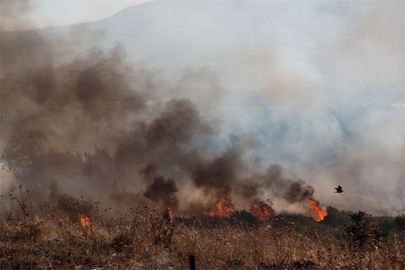 Израильские войска нанесли удар по позициям сирийской правительственной армии