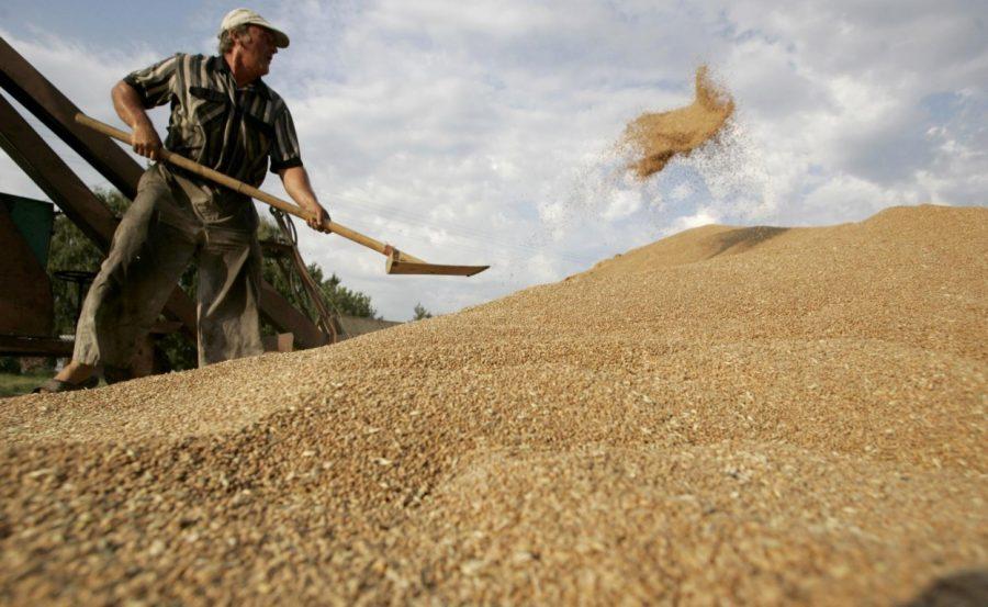 Россия экспорт зерна