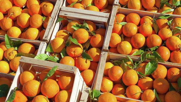 Ъ: на российских прилавках начали появляться фрукты и овощи из Сирии