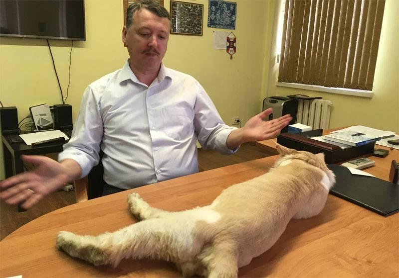 Стрелков (Гиркин) дал интервью The Guardian, в котором объявил, что разочаровался в президенте РФ Владимире Путине