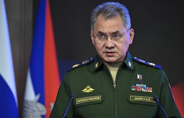 Шойгу доложил Путину, что ВС Сирии при поддержке ВКС России взяли Пальмиру