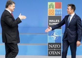 Новости Украины 5 сентября 2014: НАТО планирует оказать помощь Украине