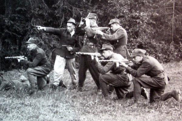 """Так называемая польская """"самооборона"""" нападала на лазареты, убивала медсестер, врачей, солдат, едущих в отпуск после ранения... Фото: www.banzaj.pl"""