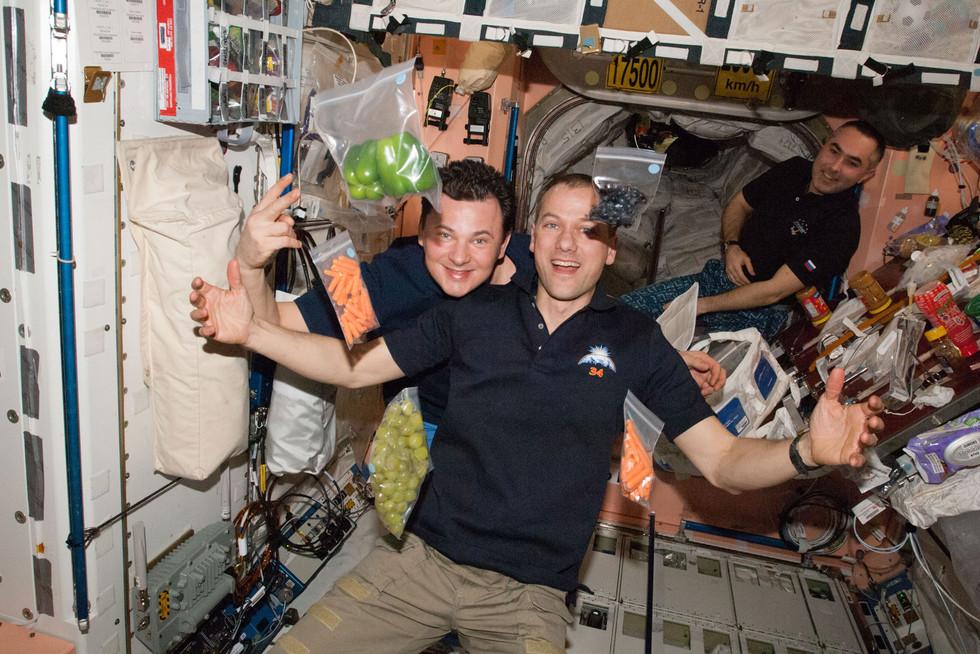 Фото: ©flickr.com/NASA Johnson