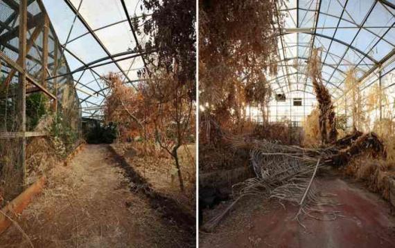 Биосфера 2 экосистема неудачный эксперимент: Экопоселения, экодеревни