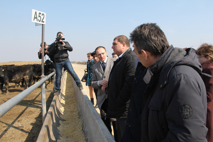 """новый проект агрохолдинга """"Мираторг"""" в Орловской области 27 марта 2015 г."""