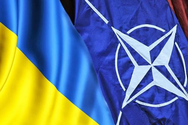 Учения НАТО на западе Украины могут закончиться атакой на Приднестровье