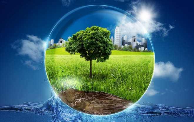 Картинки по запросу год экологии в россии
