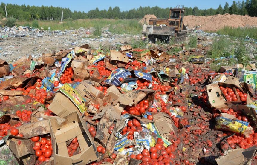 Потеря для Европы: Россия безжалостно уничтожает санкционные продукты