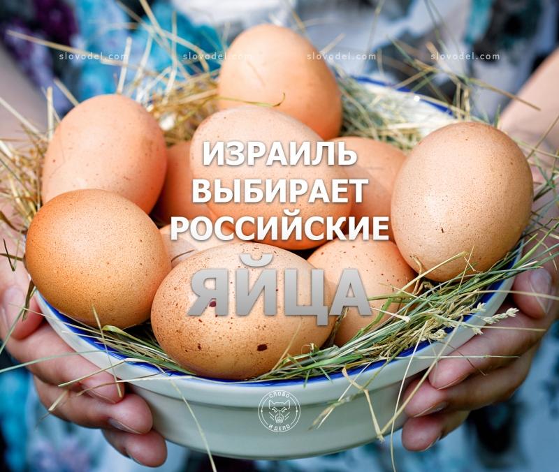 Израиль выбирает российские яйца