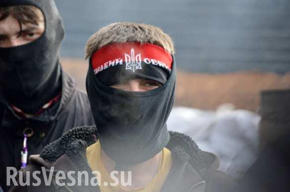 Следком возбудил уголовное дело против россиян, связанных с «Правым сектором» | Русская весна