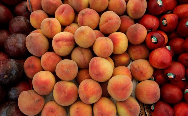 Россия ввела запрет на реэкспорт из Белоруссии некоторых фруктов и ягод