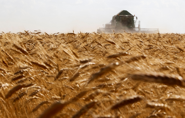 Венесуэла и Россия подпишут соглашение о поставках зерна